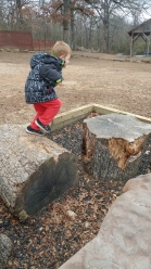 Jumping on tree stumps!