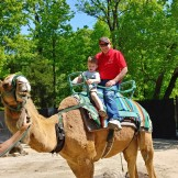 David and Papa on the camel